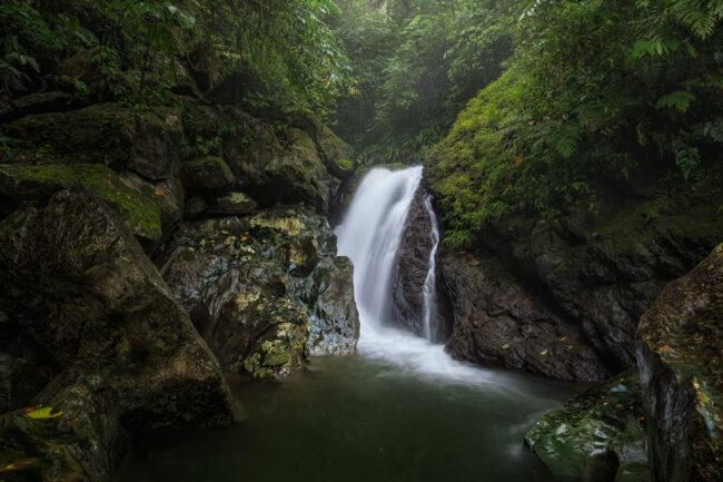 kleiner Wasserfall in einem grünen Wald