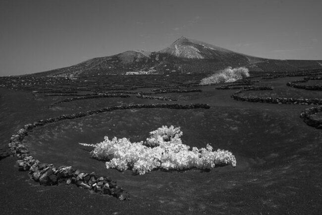 Ein dunkler Berg, im Vordergrund weiß erscheinendes Gras