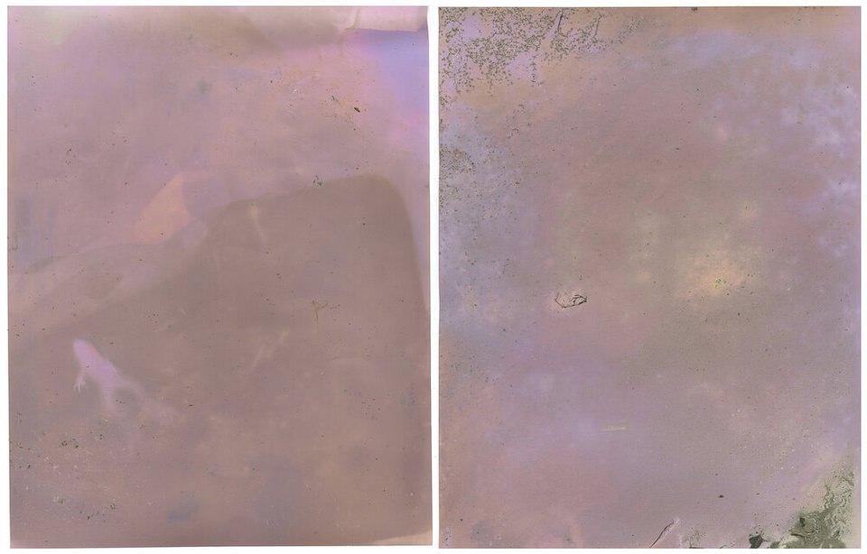 Farbfläche mit Überresten von Naturmaterial