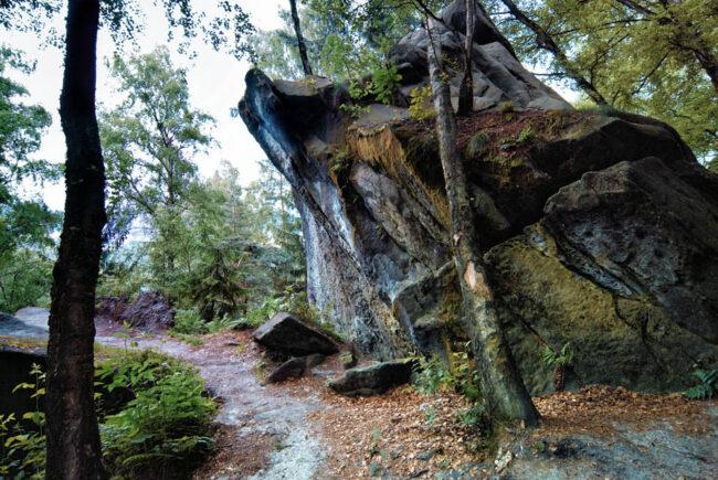 aufragende Steinformation im Wald