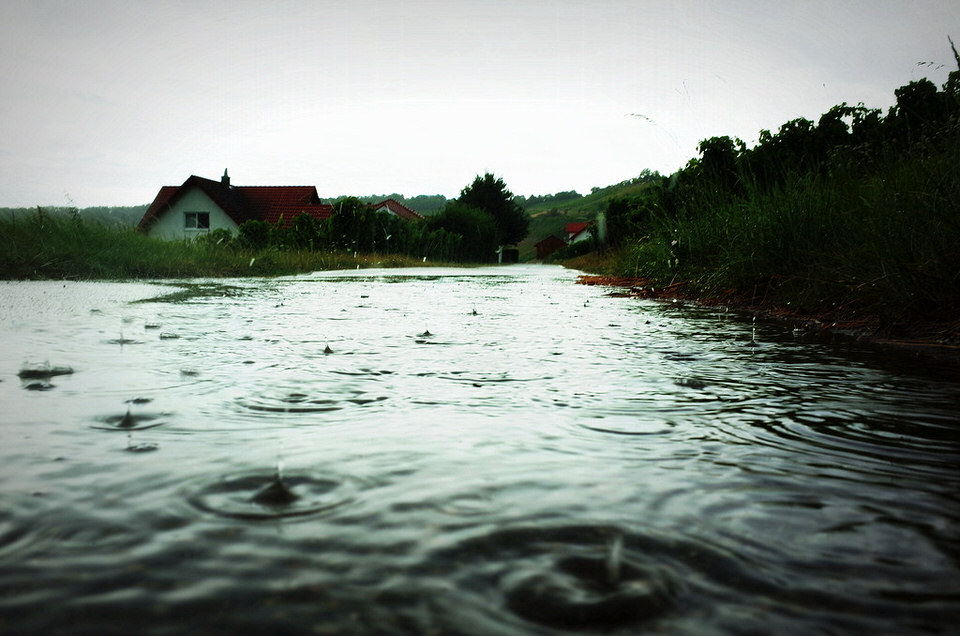 Regen tropft in einen Teich
