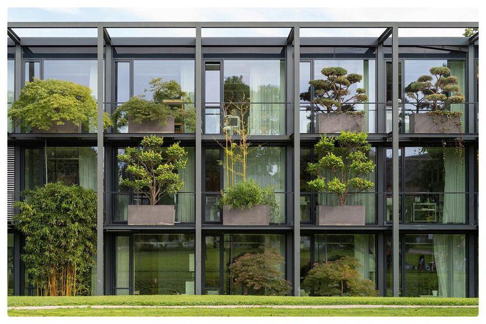 Balkone auf denen kleine Bäume stehen