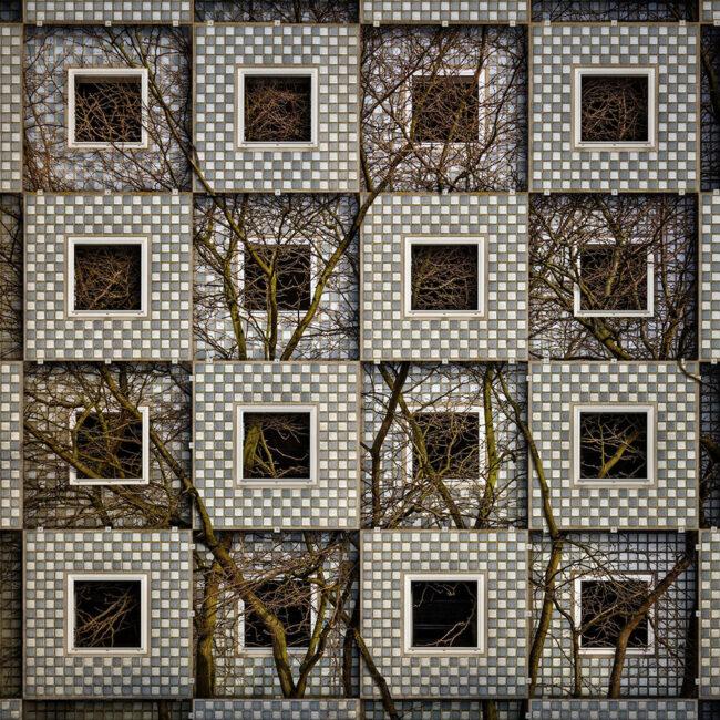Surreale Fensterfassade, mit einem Baum verwoben