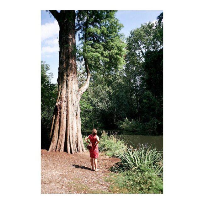 Eine Frau steht neben einem Baum