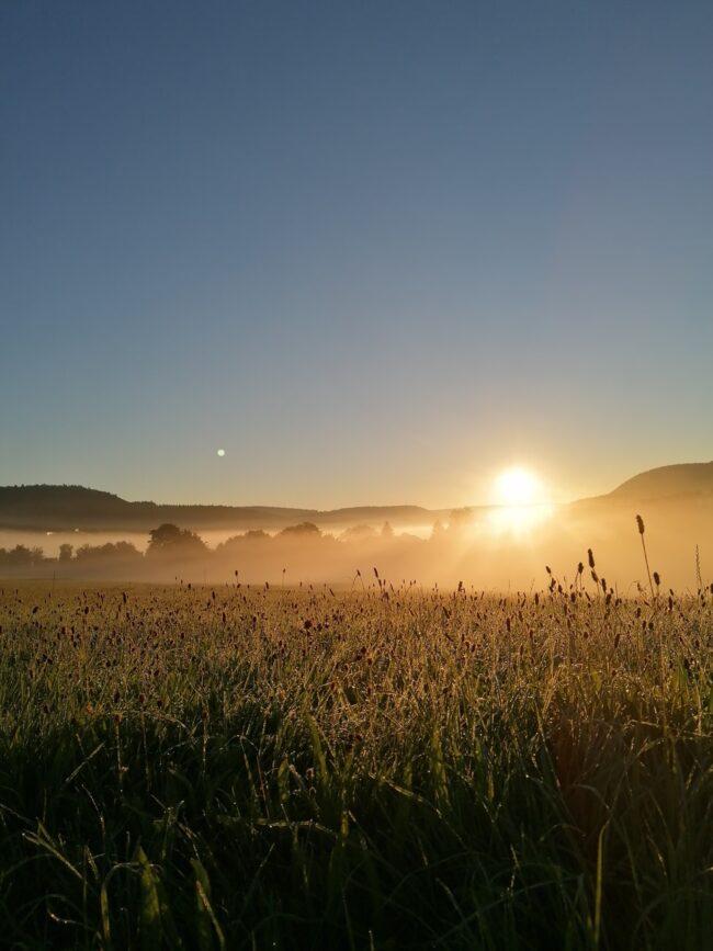 Sonnenaufgang über einem nebligen Feld