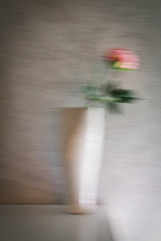 Verschwommene Vase mit Rose