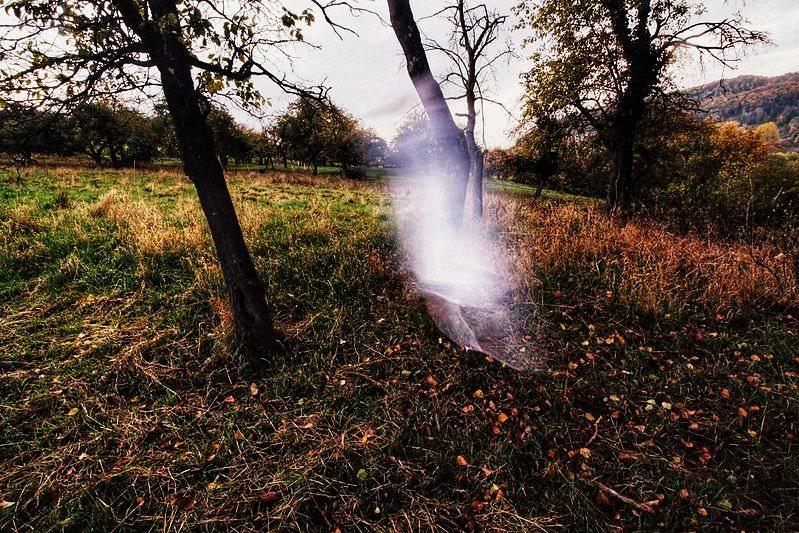 Geistergestalt zwischen Bäumen