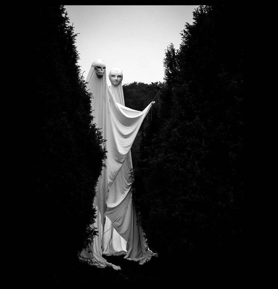 Geister zwischen Hecken
