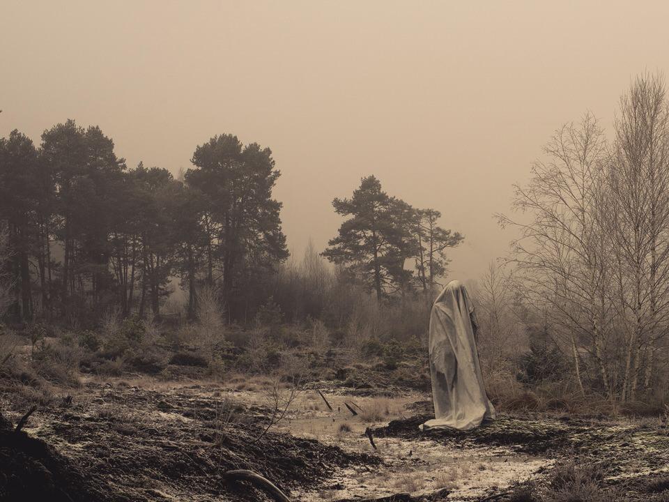 Ein Geist im Wald