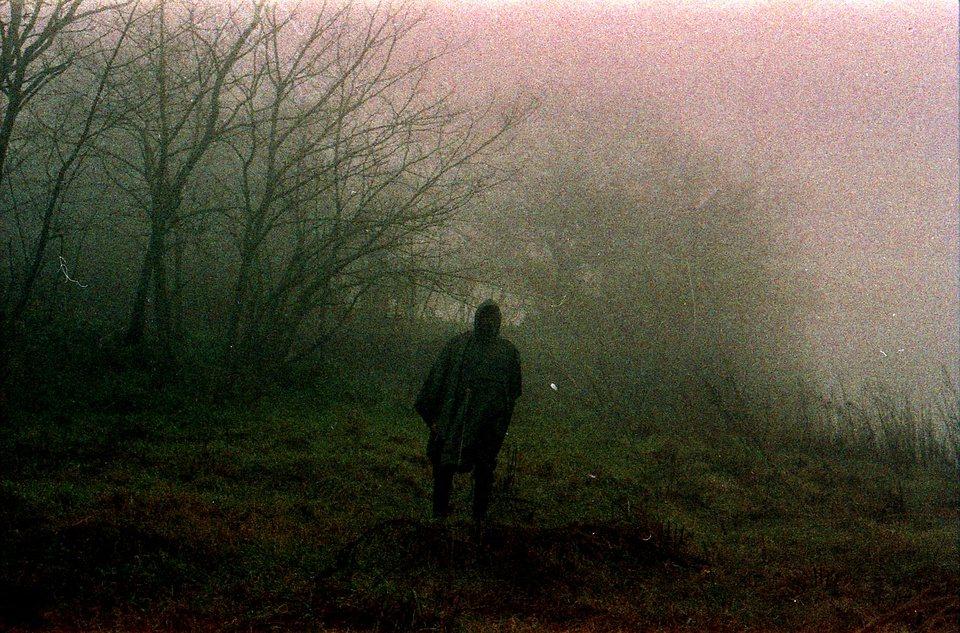 Silhouette im Nebel vor Bäumen