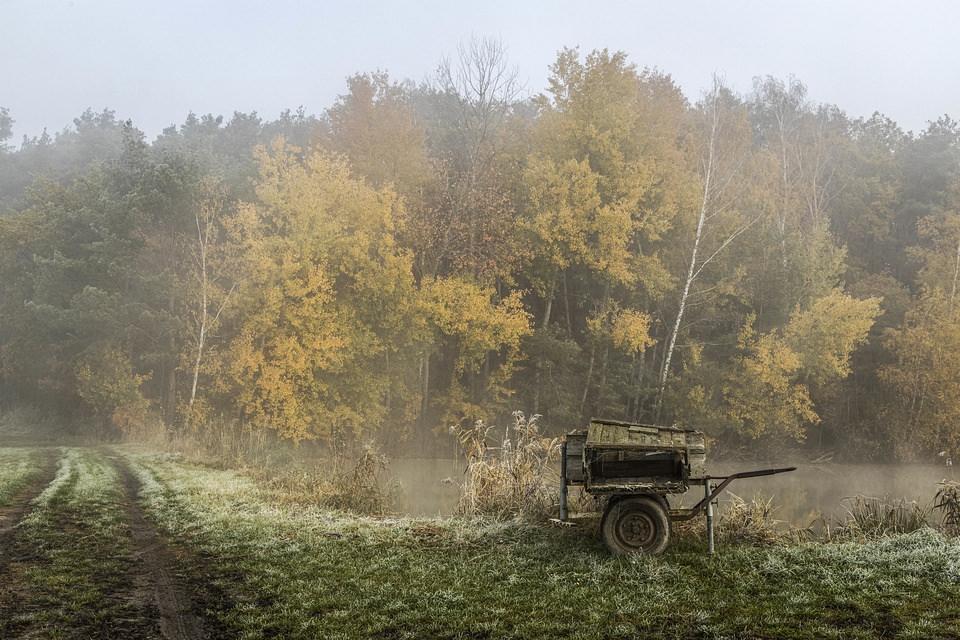 Karre auf einem Feld vor Wald