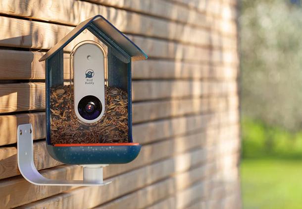 Vogelhäuschen mit Kamera