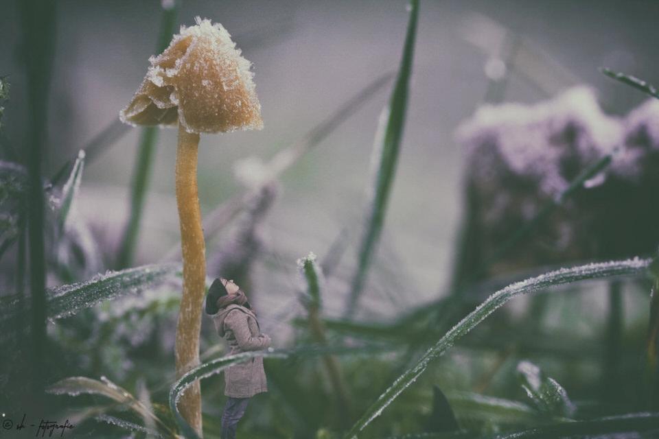kleiner Mensch im Gras