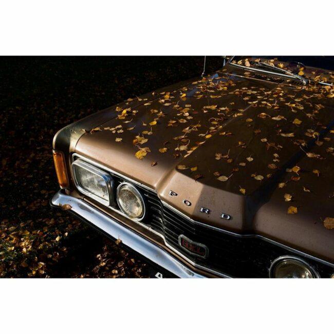 Auto mit Laub bedeckt