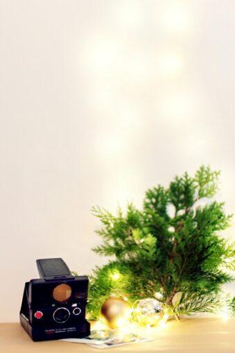 weihnachtliches Stillleben mit Pflanzen, Kamera und Polaroids