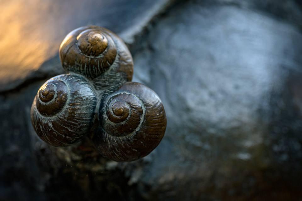 Weinbergschnecken in einer Skulptur