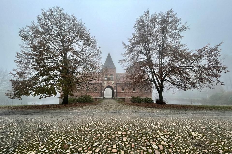 Burgeinfahrt von zwei Bäumen gerahmt