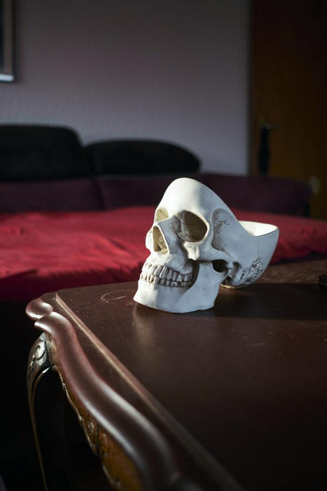 Schädel auf einem Möbelstück