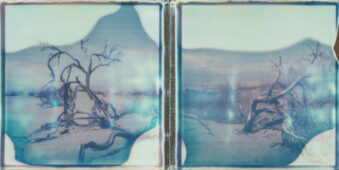 zwei Polaroids