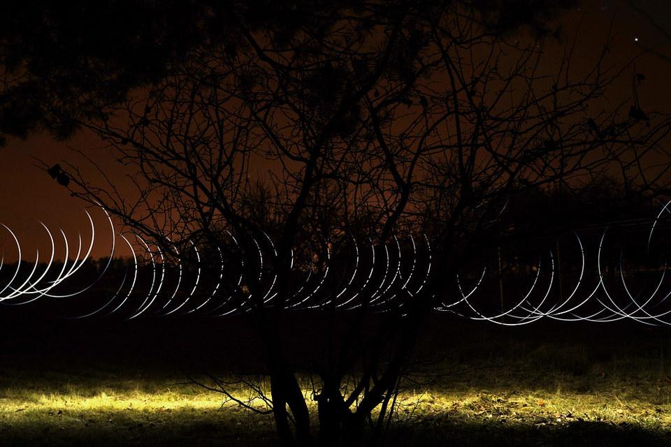 Baum mit Lichtspiel