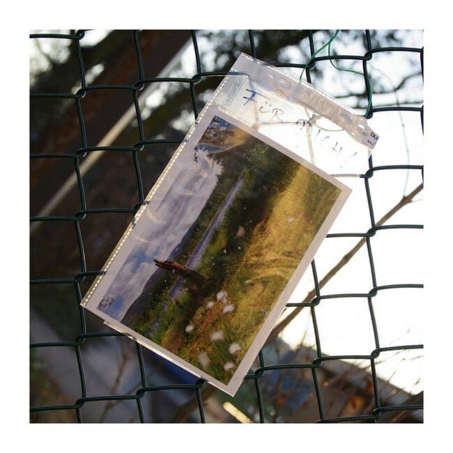 Foto zum mitnehmen an einem Zaun