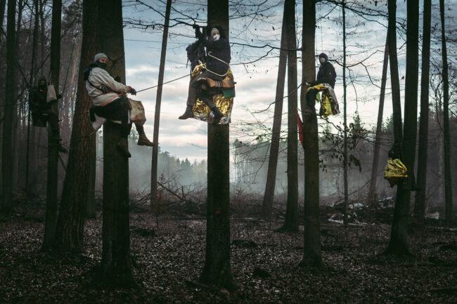 Drei Menschen auf Bäumen