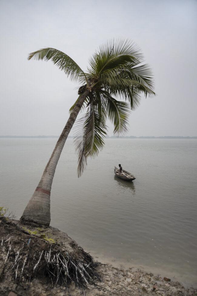 Fischerboot unter einer Palme