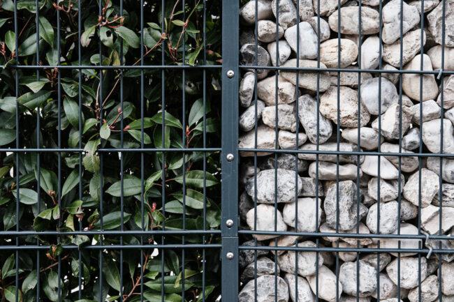 Eingezäunte Hecke und Steine