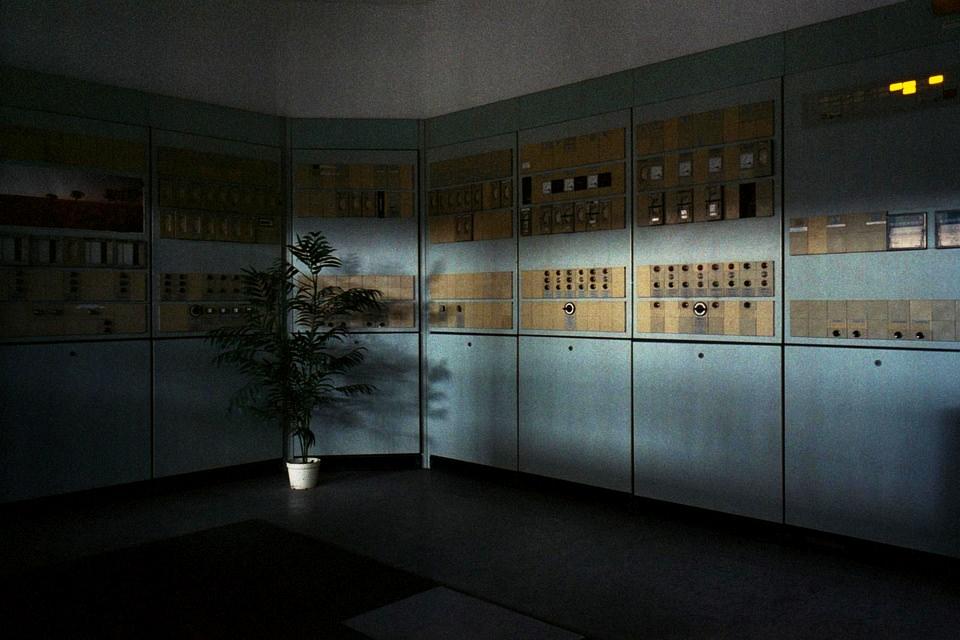 Zimmerpflanze in dunklem, trostlosem Raum