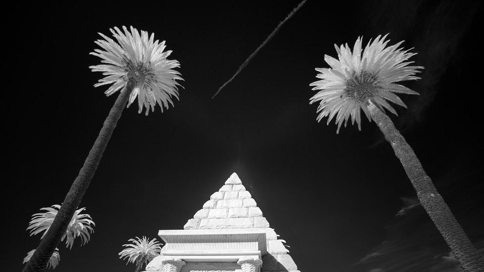 zwei Palmen über Pyramide
