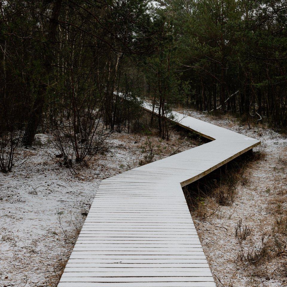 Steg in der Natur mit Schnee
