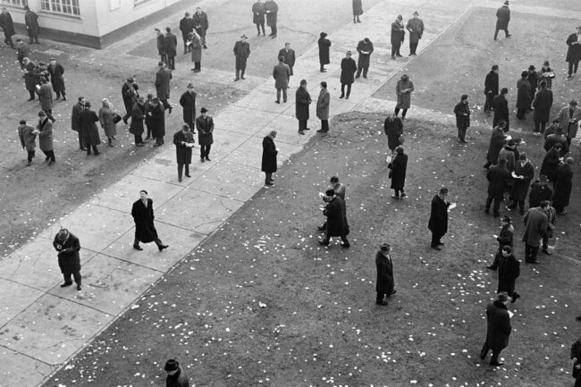 Menschenmenge in einem Park