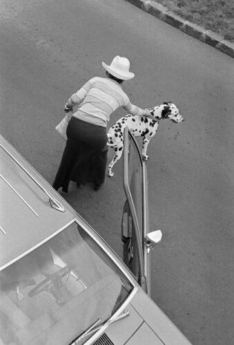 Frau mit Hund an einem Auto