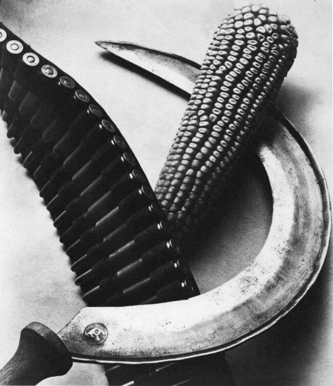 Patronengürtel, Maiskolben und Sichel