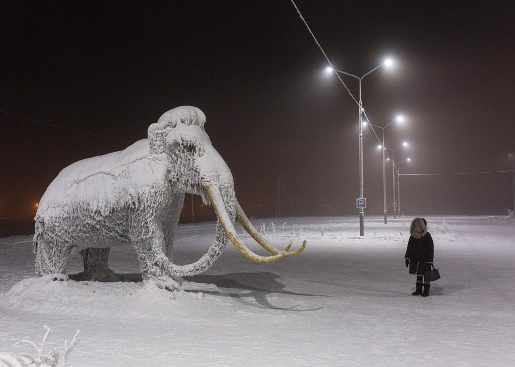 Eine Person steht vor einem verschneiten Mammut