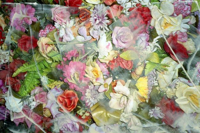 Übermaltes Foto mit Blumen