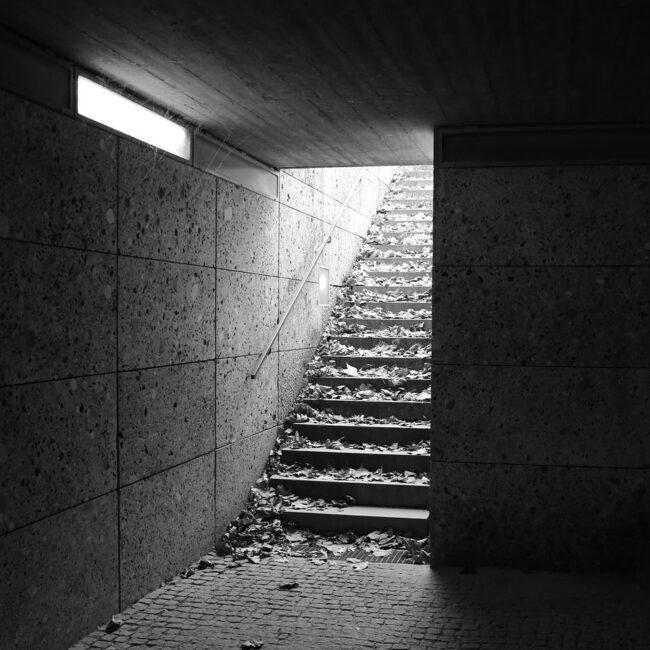 Laub auf einer Treppe
