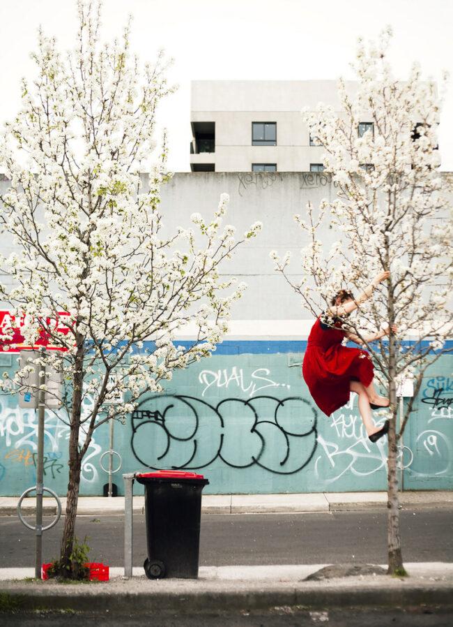 Frau klettert auf blühenden Baum