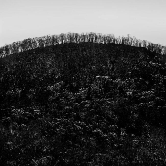 Verbrannte Landschaft