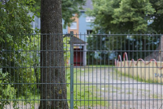 Zaun mit Baum dahinter