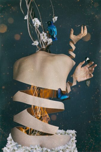 digitale Collage: Körper mit Feuer, Pflanze und Tieren