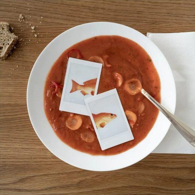 Suppe mit Polaroids eines Fischs