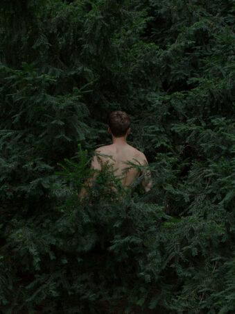 Person im Gebüsch