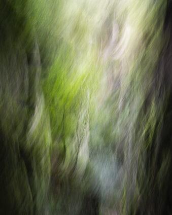 Verschwommenes Bild