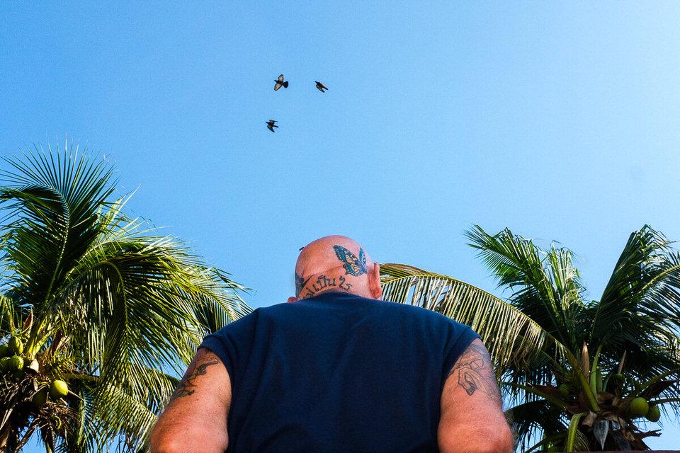 Ein Mann mit Schmetterlingstattoo am Kopf, über ihm fliegen Vögel